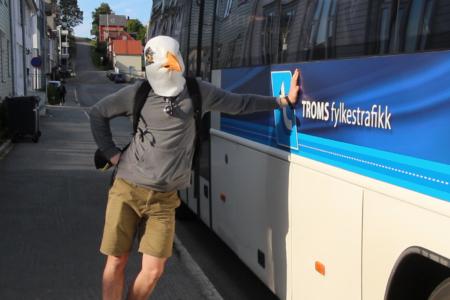 Buss til og fra Bukta
